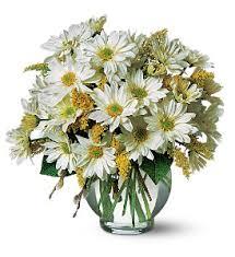 elkton florist cheer tf58 3 vase arrangement in elkton md fair hill florist