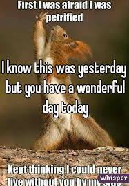 Dramatic Squirrel Meme - good morning whisper world i hope you all have a wonderful day i