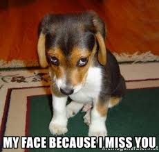Miss You Meme - my face because i miss you sad puppy meme generator