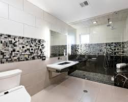 Handicap Bathrooms Designs Ada Bathrooms Cute And Cozy Wheelchair Accessible Bathroom Not A