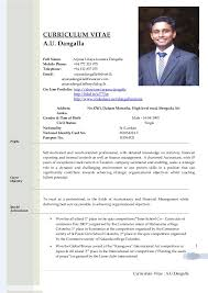 curriculum vitae structure gallery of cv formats notes new latest cv formats 2012 2013 black