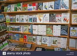 books on shelves woman s com