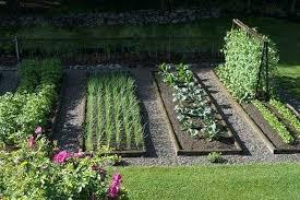 Veggie Garden Ideas Backyard Veggie Garden Ideas Backyard Vegetable Garden Layout