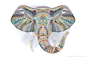 apple wallpaper elephant elephant 4k hd desktop wallpaper for 4k ultra hd tv wide