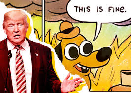 Me Me Images - how the gop ruined this is fine dog
