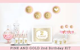 Gold And Pink Party Decorations 2nd Birthday Birthday Party Decorations 2nd Birthday