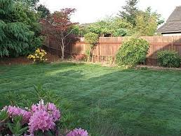 simple backyard landscape design simple landscaping ideas for