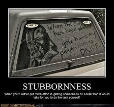 Stubborn Memes - stubbornness very demotivational demotivational posters very