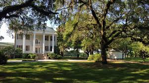 wedding venues charleston sc wedding event venues charleston county parks and recreation