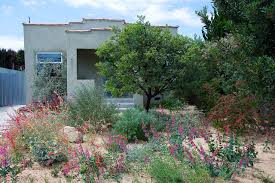 native plant nursery santa cruz garden 31 in del rey theodore payne native plant garden tour