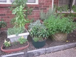 garden design garden design with outdoor herb garden home design