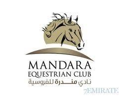 garage bathroom ideas freetemplate club mandara equestrian club items for sale