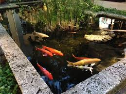 Pond Landscaping Ideas Koi Pond Ideas Design Interior Design