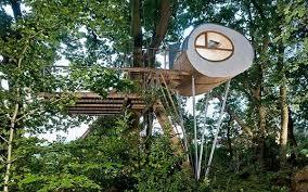 cool tree house cool tree house ideas