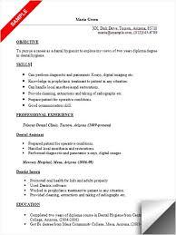 dental hygienist resume sample