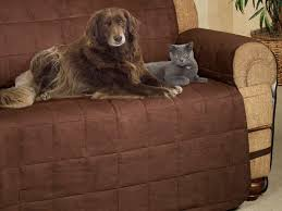 sofa covers pet protection sofa covers from orvis are a must have