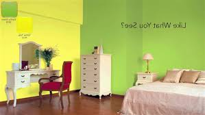 colour combination for hall images nerolac paints gallery fine model colour combination for living