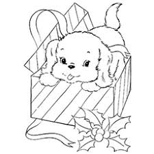 pages cute puppies print