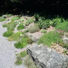 Rock For Garden Lovely Decorative Rocks For Garden Garden Sticks N Stones Garden