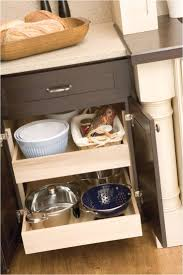 Roll Out Trays For Kitchen Cabinets 136 Best Cooking With Ease Images On Pinterest Kitchen Storage