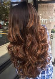 hair color high light 30 chic highlight ideas for your brown hair