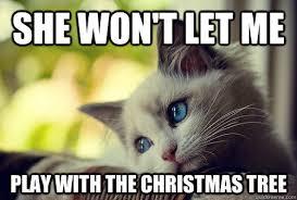 Cat Christmas Tree Meme - cats in christmas trees memes best tree 2017