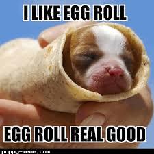 Roll Meme - roll