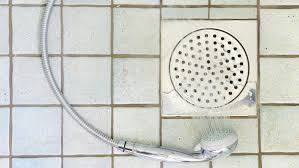 how do i get rid of a shower drain smell reference com