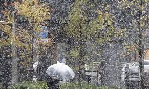 november tokyo snow falls in november in tokyo for first time in 54 years
