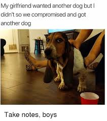 Dog Girlfriend Meme - my girlfriend wanted another dog but l didn t so we compromised and