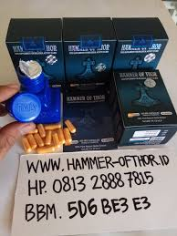 jual hammer of thor asli di jayapura archives hammer of thor