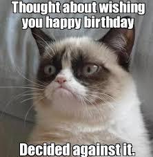 Cat Happy Birthday Meme - coolest grumpy cat happy birthday meme funny cute angry cat memes