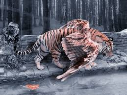 tiger by wolvesillusion on deviantart