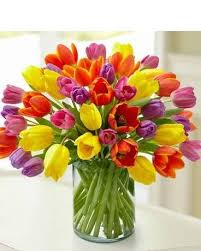 Flower Delivery Boston Tulips Flower Delivery Boston Ma Boston Blooms