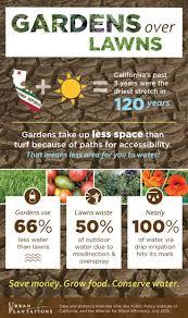 207 best lawn alternatives images on pinterest landscaping
