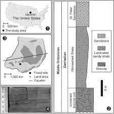 Giant Map Of The United States by Exceptionally Preserved Conodont Apparatuses With Giant Elements