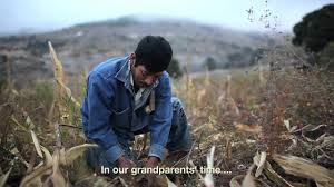 stay migration and poverty in rural mexico youtube