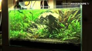 How To Aquascape A Planted Tank How To Aquascape Planted Tank From Youtube Kren A Biz