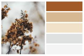 fall color palettes for interior home painting central sound