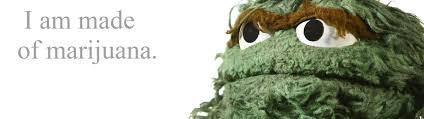 Oscar The Grouch Meme - marijuana sesame street oscar the grouch ultra or dual high