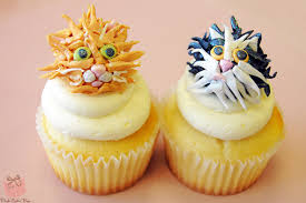 cat themed cupcakes pink cake box