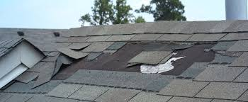 Roof Repair  Leak Detection  Inspection  Phoenix Scottsdale  Mesa
