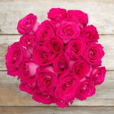 hot pink roses unconditional hot pink bouquet the bouqs co