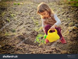 little watering plants garden stock photo 145572277
