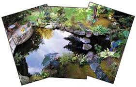 How To Make A Koi Pond In Your Backyard How To Build And Maintain A Proper Koi Pond