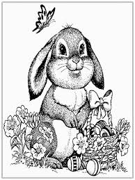 free rabbit coloring pages for realistic coloring pages