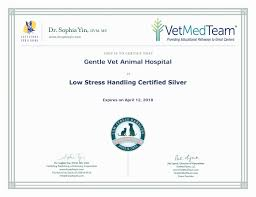 gentle vet animal hospital vets serving green bay wi home