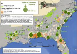 North America Forest Map by Maps America U0027s Longleaf Restoration Initiative