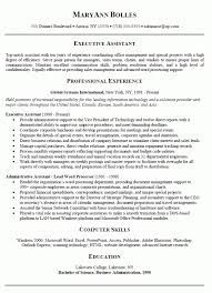 Sample Resume Executive Summary by Executive Summary Example Resume U2013 Resume Examples