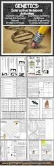 best 20 punnett square activity ideas on pinterest dna genetics